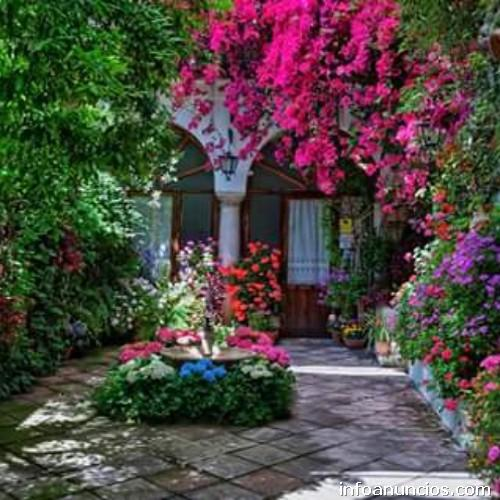 Fotos de jardiner a bucaramanga for Jardineria fotos