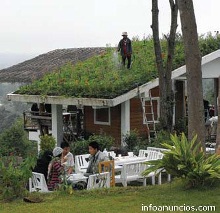 Fotos de servicio de jardiner a y paisajismo romero s a s for Jardineria santander